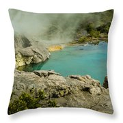 Hot Mud Throw Pillow