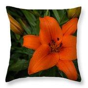 Hot Orange Lily  Throw Pillow