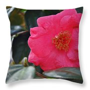 Hot Pink Camellia Throw Pillow