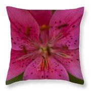 Hot Pink Close Up Throw Pillow