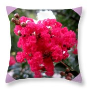 Hot Pink Crepe Myrtle Blossoms Throw Pillow