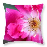 Hot Pink Rose Throw Pillow