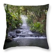 Hot Springs Throw Pillow