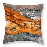 Hot Springs Mineral Flow Throw Pillow