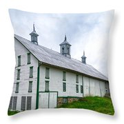 Hotel Bovine 2646c Throw Pillow