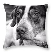 Hound Throw Pillow
