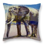 Hourglass Throw Pillow by Michael Creese
