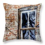 House 13086 Throw Pillow