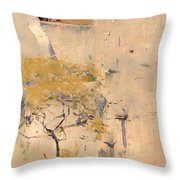House Builders In Cairo Throw Pillow