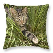 House Cat Hunting In Grass Germany Throw Pillow
