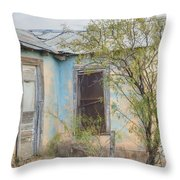 House In Ft. Stockton IIi Muted Throw Pillow
