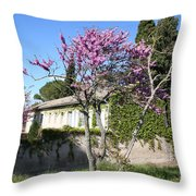 House In The Provence Throw Pillow