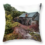 House On A River Throw Pillow