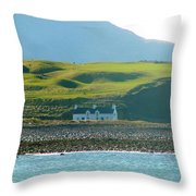 House On The Shore Throw Pillow