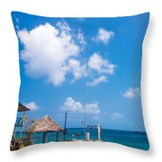 House Overlooking The Sea Throw Pillow