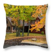 House Surrounded With Colors Throw Pillow