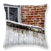 House With Shed 13122 Throw Pillow