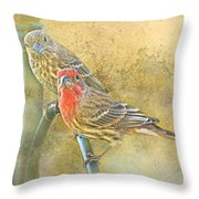 Housefinch Pair With Texture Throw Pillow