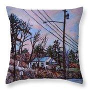 Houses In Pulaski Throw Pillow
