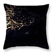Houston We Have Something II Throw Pillow