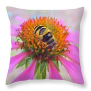Hover Fly On Purple Coneflower Throw Pillow