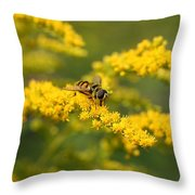 Hoverfly Feeding Throw Pillow