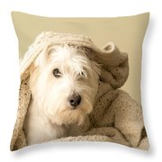 How About A Snuggle Card Throw Pillow