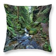 How Green Is My Glen Throw Pillow