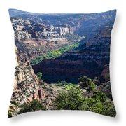 How Green Is The Valley 2 Throw Pillow