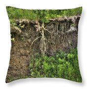 How Long Can I Hang On Throw Pillow