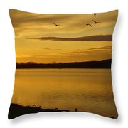 How Many Birds Can You Count? Throw Pillow