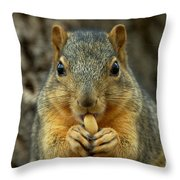 How Many Licks Throw Pillow