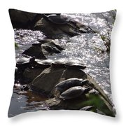 How Many Turtles Throw Pillow
