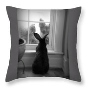 How Much Is The Doggie In The Window? Throw Pillow