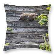 How Much Wood Throw Pillow