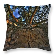 How Sweet It Is Throw Pillow
