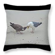 How To Eat A Blue Crab - Great Black Backed Gull In Training Throw Pillow