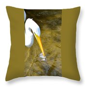 How To Fish Throw Pillow