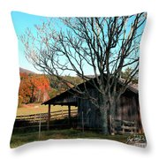 Howard's Gap Throw Pillow