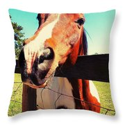 Howdy Do Throw Pillow