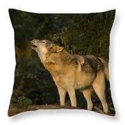 Howler Throw Pillow