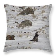 Howlin' In The New Year   #3536-signed Throw Pillow