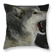Howling Gray Wolf  Throw Pillow