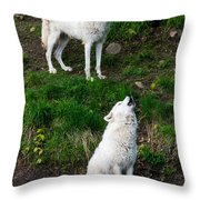 Howling Wolves Throw Pillow