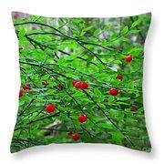 Huckleberry Bush Throw Pillow