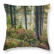 Huckleberry Patch Throw Pillow