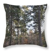 Huckleberry Trail Throw Pillow