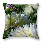 Hues Of Softness Dahlia Throw Pillow