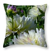 Hues Of Softness Dahlia Throw Pillow