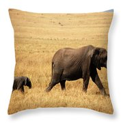 Huge Expectaions Throw Pillow